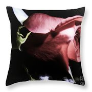 Always And Forever 2 Throw Pillow