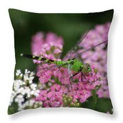 Always Stop To Smell The Flowers Throw Pillow