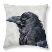 Am I Good Looking Or What Throw Pillow