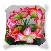 Amaryillis Flower Ring Throw Pillow