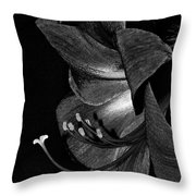 Amaryllis Flower Side View Black And White Throw Pillow