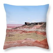 Amazing American Landscape Throw Pillow