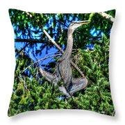 Amazing Heron Throw Pillow