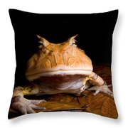 Amazonian Horned Frog Throw Pillow