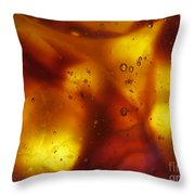Amber Colors Throw Pillow