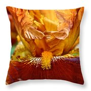Amber Stripes Throw Pillow