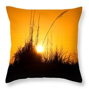 Amber Waves Throw Pillow