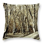 Ambresbury Banks Iron Age Fortification Throw Pillow