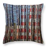 America Still Beautiful Throw Pillow