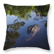 American Alligator In The Okefenokee Swamp Throw Pillow