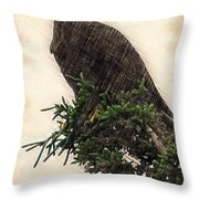 American Bald Eagle In Tree Throw Pillow by Dan Friend