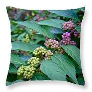 American Beautyberry Shrub - Callicarpa Americana Throw Pillow