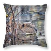 American Beaver Throw Pillow