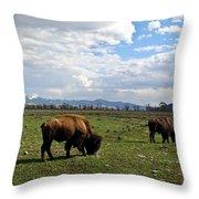 American Buffalo 10 Throw Pillow