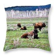 American Buffalo 16 Throw Pillow