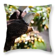 American Idol Throw Pillow