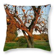 American Persimmon Tree Throw Pillow