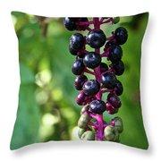 American Pokeweed Berries Throw Pillow