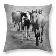 American Quarter Horse Herd In Black And White Throw Pillow