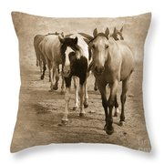 American Quarter Horse Herd In Sepia Throw Pillow