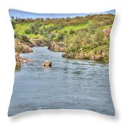 American River II Throw Pillow