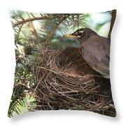American Robin Throw Pillow