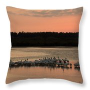 American White Pelicans At Sunset Throw Pillow