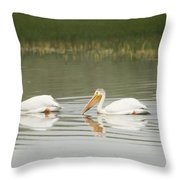 American White Pelicans Swim In A Line Throw Pillow
