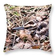 American Woodcock Chick No. 2 Throw Pillow
