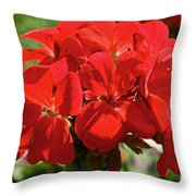 American's Red Throw Pillow