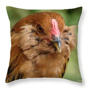 Amerucana Throw Pillow