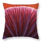 Amethyst Deceiver Laccaria Amethystea Throw Pillow