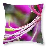 Amherstia Nobilis 3 Throw Pillow