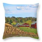 Amish Cornfield Throw Pillow