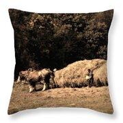 Amish Hay Wagon Throw Pillow by Tom Mc Nemar