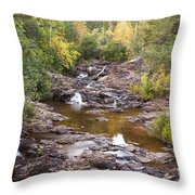 Amity Creek Autumn 2 Throw Pillow