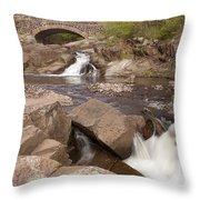 Amity Creek Scene 8 Throw Pillow