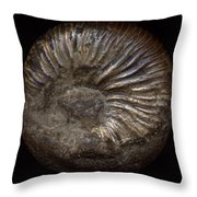 Ammonite Back Throw Pillow