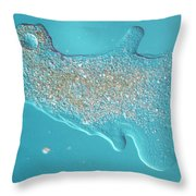 Amoeba Throw Pillow