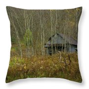 Among The Birches 0020 Throw Pillow