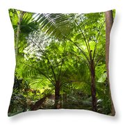 Among The Tree Ferns Throw Pillow