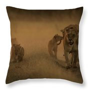 An African Lioness And Cubs, Panthera Throw Pillow