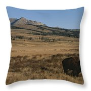 An American Bison Standing Throw Pillow