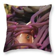 An Anemonefish Peeks Throw Pillow