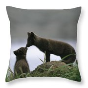 An Arctic Fox And Her Kit.  The Foxes Throw Pillow
