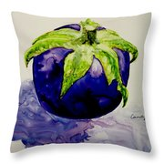 An Attractive Round Throw Pillow