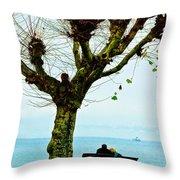 An Autumn Affair Throw Pillow