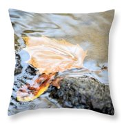 An Autumn Day's Rest Throw Pillow