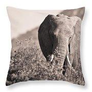 An Elephant Walking In The Bush Samburu Throw Pillow