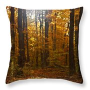 An Inspired Stroll Through The Forest Throw Pillow by Inspired Nature Photography Fine Art Photography